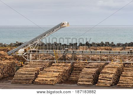 Napier New Zealand - March 9 2017: Part of large timber harbor under silver sky. Heaps of brown tree trunks sawed at fixed length. Pacific Ocean in back. Long loading belts between the piles.