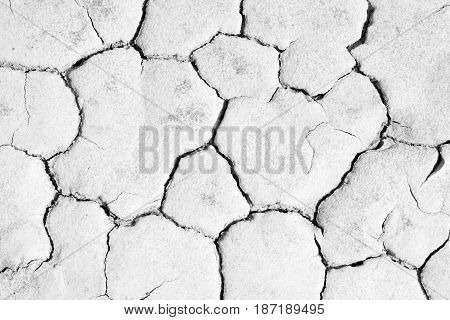 Close up of crack soil texture background