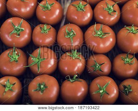 Fresh Tomato Vegetable Harvest From Farm