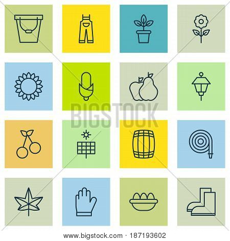 Set Of 16 Plant Icons. Includes Fruits, Maize, Decorative Plant And Other Symbols. Beautiful Design Elements.