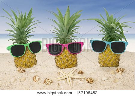 Three fresh pineapples on the sand with sun glasses starfish and seashells at the tropical beach