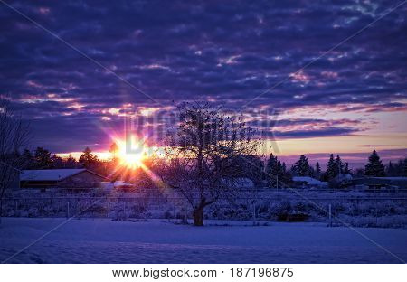 Sun rising above a snow covered backyard in winter