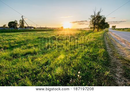 Beautiful summer sunset in the countryside. Landscape in the field