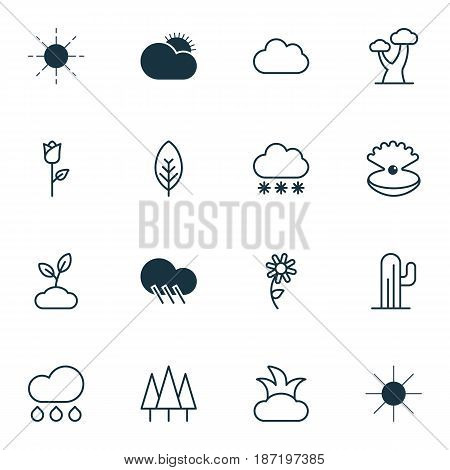 Set Of 16 Harmony Icons. Includes Sunny Weather, Tree Leaf, Cloud And Other Symbols. Beautiful Design Elements.