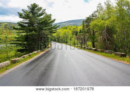 Beautiful Maine road in Acadia national park