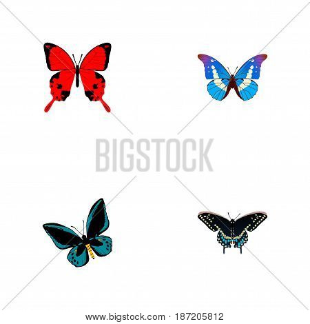 Realistic Demophoon, Bluewing, Sangaris And Other Vector Elements. Set Of Beautiful Realistic Symbols Also Includes Julia, Red, Morpho Objects.