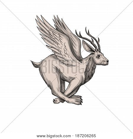 Tattoo style illustration of a Wolpertinger in Bavarian folklore a mythical hare with antlers fangs and wings running viewed from the side set on isolated white background.