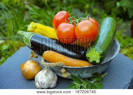 Fresh Various Vegetables For Garnish, Soups, Gastronomic Dishes