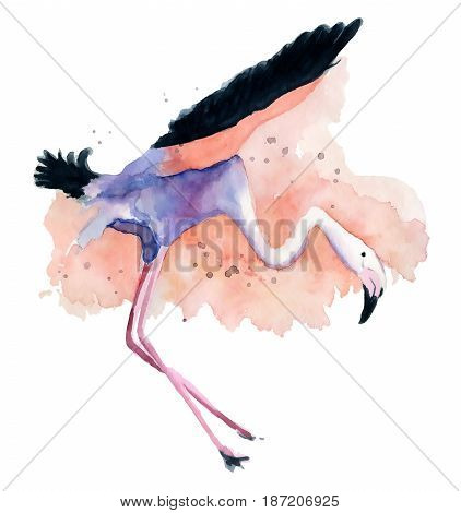 flying bird Watercolor pink flamingo hand painted watercolor pink flamingo tropical bird