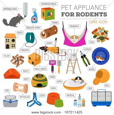 Pets_appliance_rodents_2