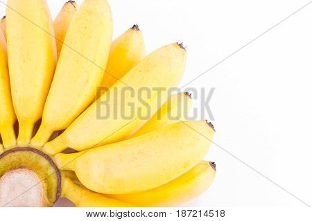 organic hand of golden bananas   on white background healthy Pisang Mas Banana fruit food isolated