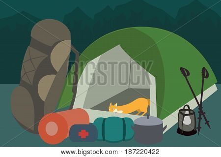 hiking gear and  camping equipment - funny vector cartoon illustration