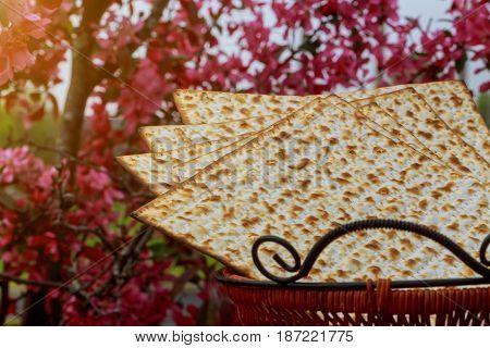 matzoh jewish passover bread Passover matzo Passover