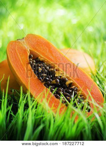 Yellow Papaya On Green Grass