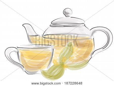 herbal tea isolated on a white background