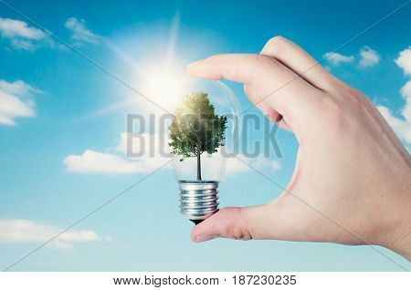 Energy efficiency concept. Abstract composition with tree in bulb on nature background