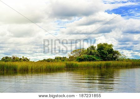 Wetlands in Nature Reserve Esteros del Ibera National Park Colonia Carlos Pellegrini Corrientes Argentina.
