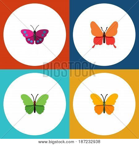 Flat Monarch Set Of Butterfly, Archippus, Milkweed And Other Vector Objects. Also Includes Monarch, Archippus, Moth Elements.