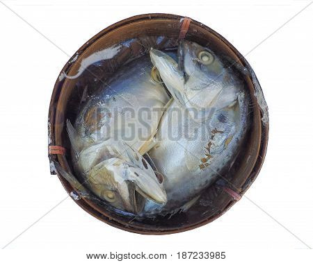 mackerel wrap plastic pack in a bamboo tray on sale Isolate and clipping paths.