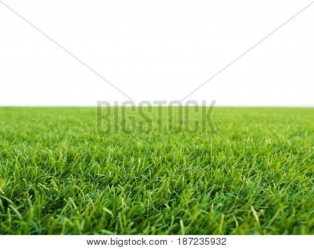 green grass or green turf on white background
