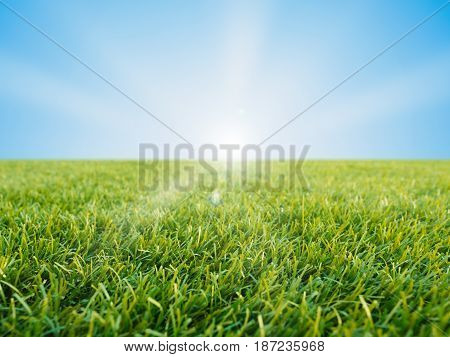 green grass or turf on blue sky background