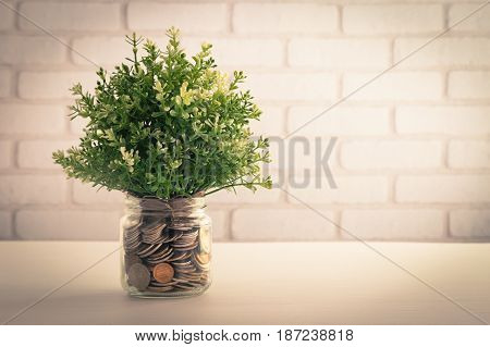 Artificial plant clover in glass money coin jar. Fake little tree in piggy bank with white bricks wall background. Retro style saving money concept