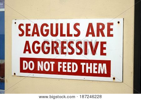 Seagulls are aggressive warning notice at UK seaside resort.