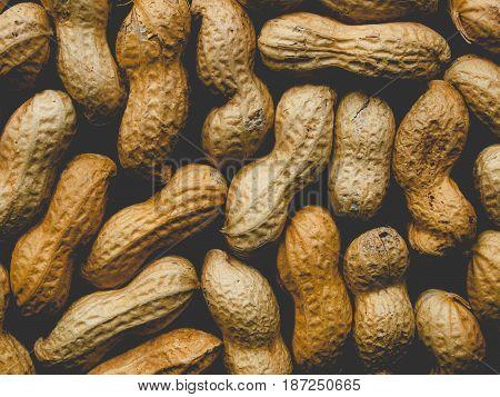 Peanut Picture, Faded Vintage Look