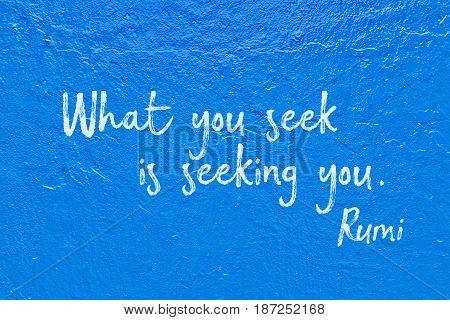 Seek You Blue Rumi