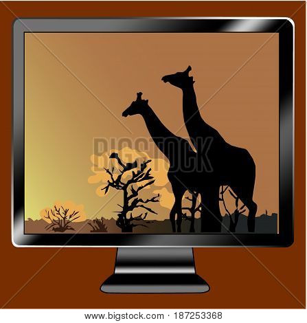 Icon tv show two giraffe in orange background