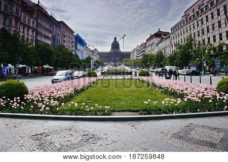 Praha, Czech Republic - May 08, 2017: Wenceslas Square With Roses On Foreground And Statue Of St. We