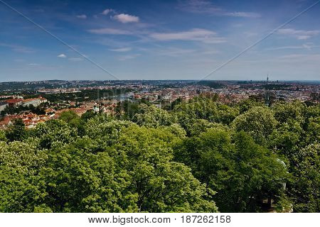 View To Vltava River In Prague With Green Trees In Foreground From Petrinska Rozhledna Tower In Spin