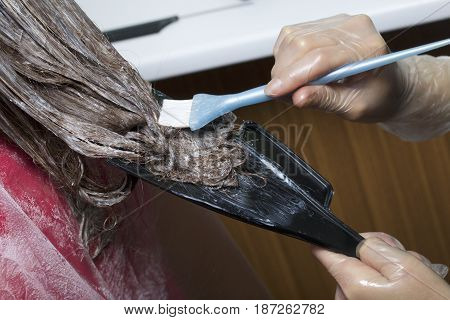 An Individual Entrepreneur Provides Services At Home. The Hairdresser Paints The Hair Of A Woman. Br