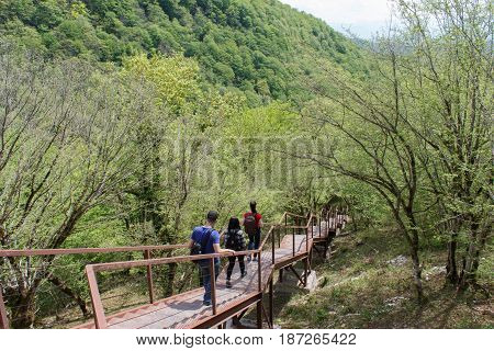 Trekking together. Active hikers. Travelers travel on the artificial roadway In the forest of the mountains reserve.