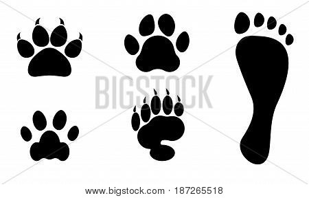 Animals and man foot print vector clip art  footstep of cat bear dog and tiger