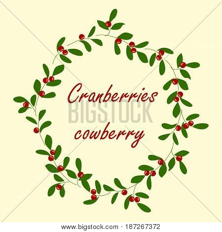 Background with cranberries. Vector background with branches, berries and leaves cranberries.