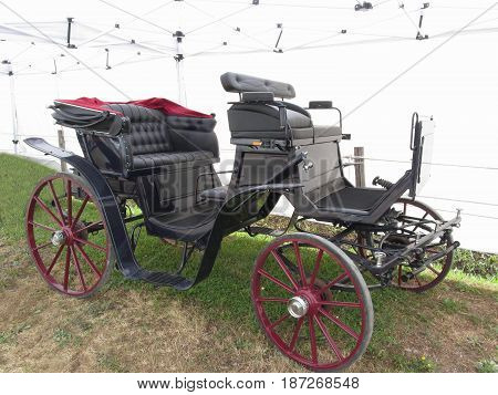 Old-fashioned horse carriage on green grass .
