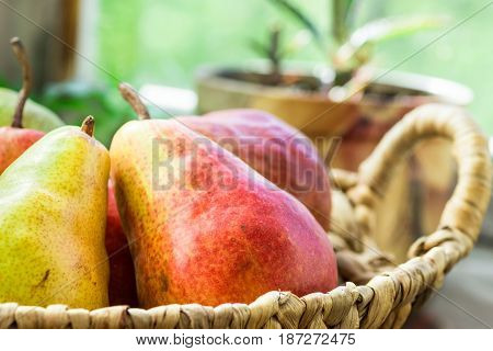 Ripe red organic pears in wicker basket on garden kitchen table by window potted flowers soft daylight cozy atmosphere countryside cottage style close up