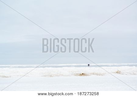 lonely tourist seashore white cold winter day