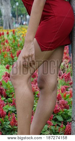 Pretty Female Teen Legs and Wearing a Red Dress