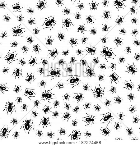 Poisonous Spider Seamless Pattern on White Background