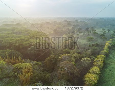 Bright Vivid Morning In Natural Landscape