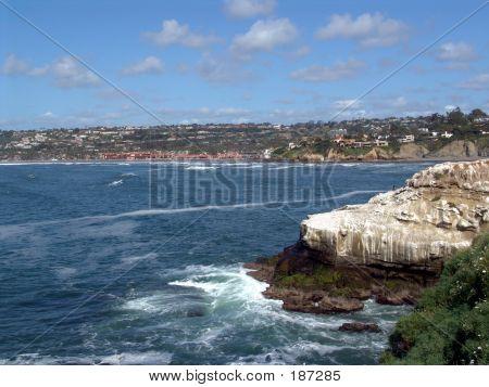 Cliffs Of La Jolla