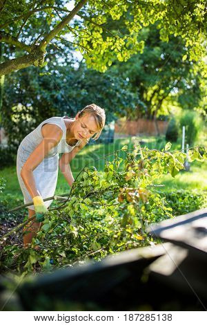 Pretty, young woman gardening in her garden, cutting branches, preparing the orchard for the winter