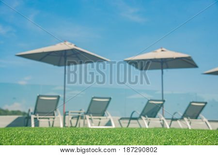 Focus On Artificial Grass Floor