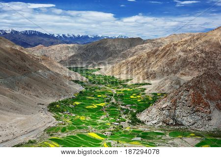 High mountains of the Himalayas valley: high slopes of brown rocks deep in the gorge green ribbon of vegetation along the river blue sky with white clouds Tibet.