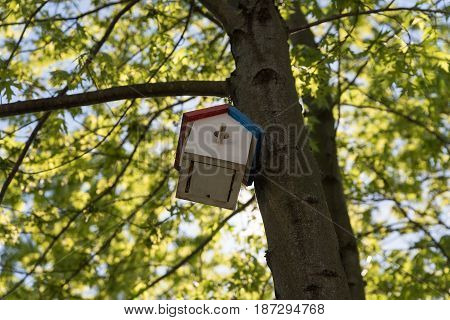 Small Wooden Birds House On A Tree In A Park
