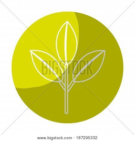 sticker nice ecology plant with leaves, vector illustration design