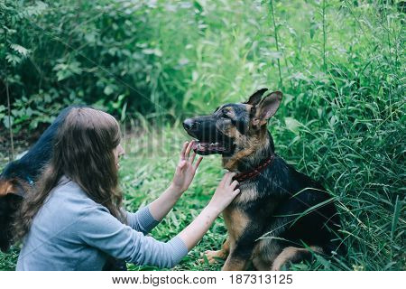German shepherd dog. Puppy. Girl and german shepherd dog