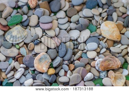 Sea pebbles with sea shell. Stone background.